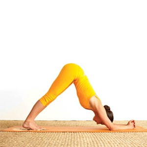Bài tập yoga tốt nhất cho toàn bộ cơ thể bạn 1