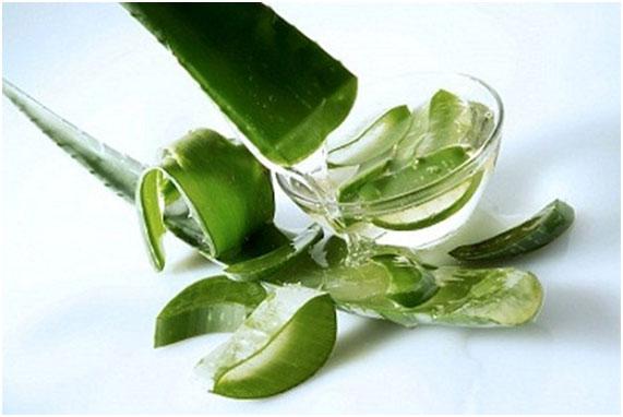 Nước ép lô hội - uống gì để giảm mỡ bụng nhanh nhất?