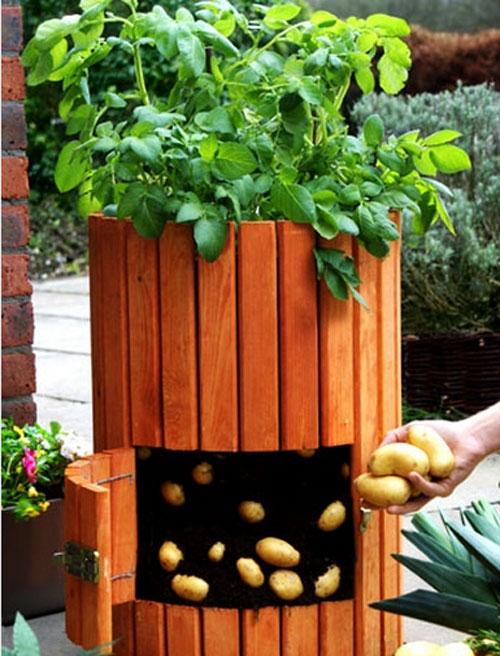 4 ý tưởng trang trí tuyệt vời cho khu vườn nhỏ 2