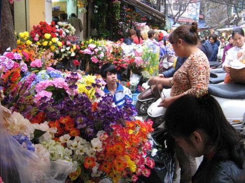 """Những """"thiên đường hoa"""" bậc nhất Việt Nam 1"""