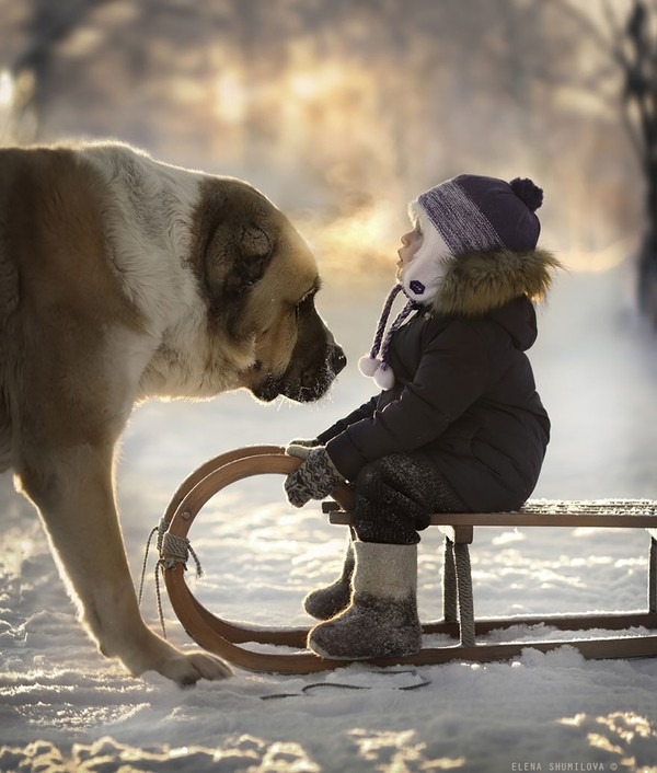 Bộ ảnh đẹp đến ngỡ ngàng của cậu bé bên các loài động vật 2