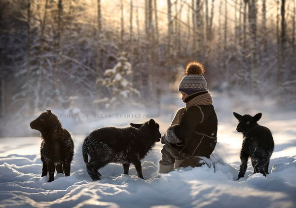 Bộ ảnh đẹp đến ngỡ ngàng của cậu bé bên các loài động vật 11