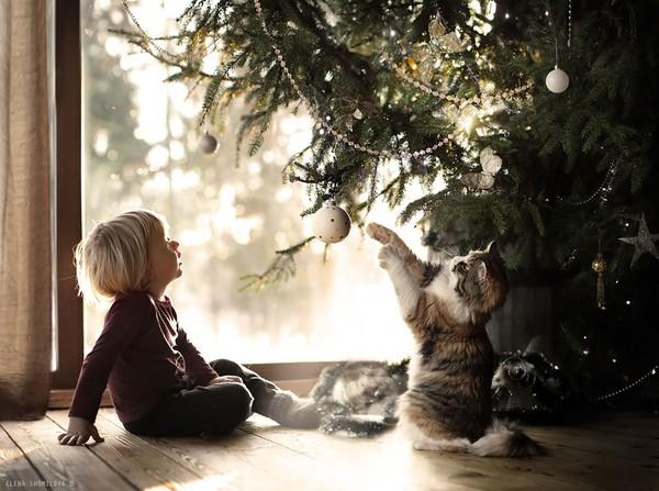 Bộ ảnh đẹp đến ngỡ ngàng của cậu bé bên các loài động vật 12