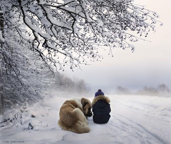 Bộ ảnh đẹp đến ngỡ ngàng của cậu bé bên các loài động vật 23