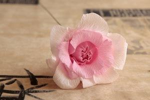 Làm hoa hồng giấy đẹp như hoa thật 8