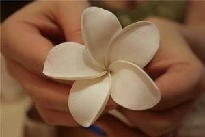 Đi lễ hội đầu năm với cài áo hoa sứ tuyệt đẹp 4