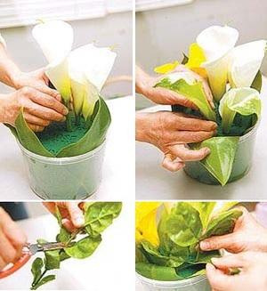 Mách bạn cách cắm hoa đẹp mà dễ dàng 3