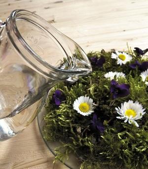 Cách cắm hoa cúc thanh nhã, tinh tế 5