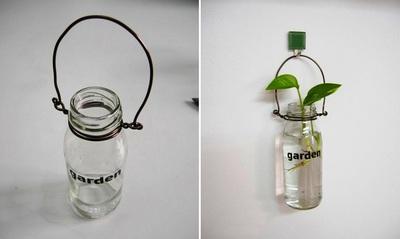 Bình trồng cây đẹp mắt từ chai lọ cũ 11