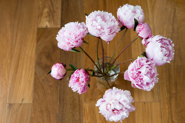 Cách trang trí và giữ hoa tươi lâu 3