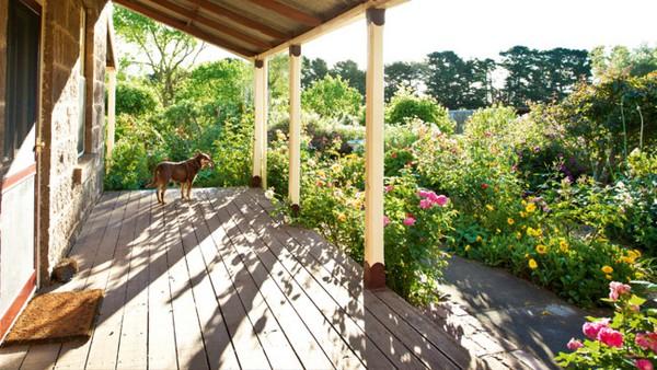 Ngắm ngôi nhà có khu vườn đầy nắng gió và hoa 1