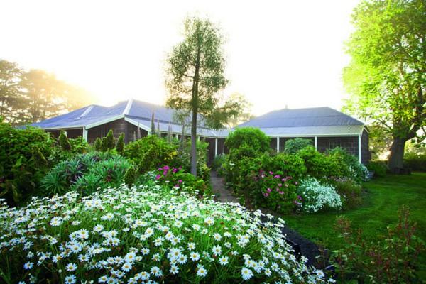 Ngắm ngôi nhà có khu vườn đầy nắng gió và hoa 3