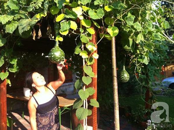 Ghé thăm khu vườn đậm chất Việt trên đất Hungary 23