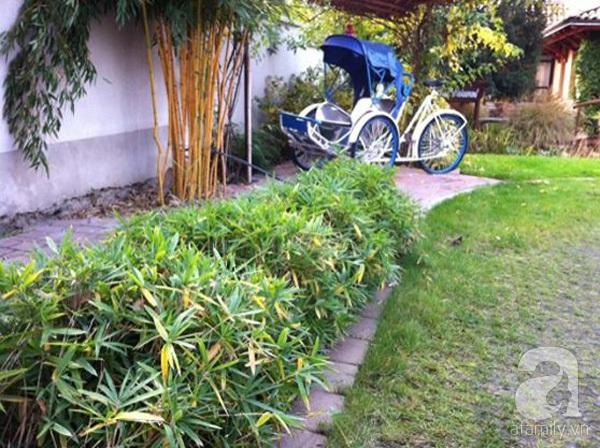 Ghé thăm khu vườn đậm chất Việt trên đất Hungary 6