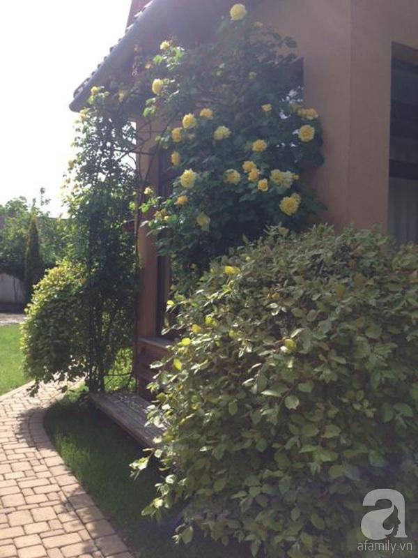 Ghé thăm khu vườn đậm chất Việt trên đất Hungary 9