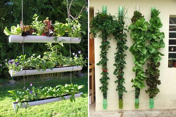 Ý tưởng làm vườn treo cực đơn giản 4
