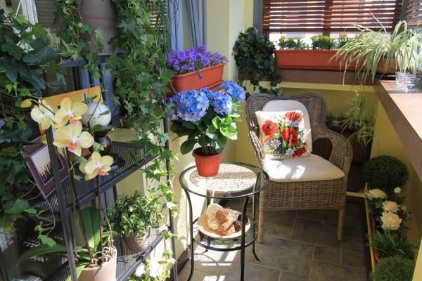Những mẫu thiết kế ban công đầy thư giãn với hoa và cây xanh 8