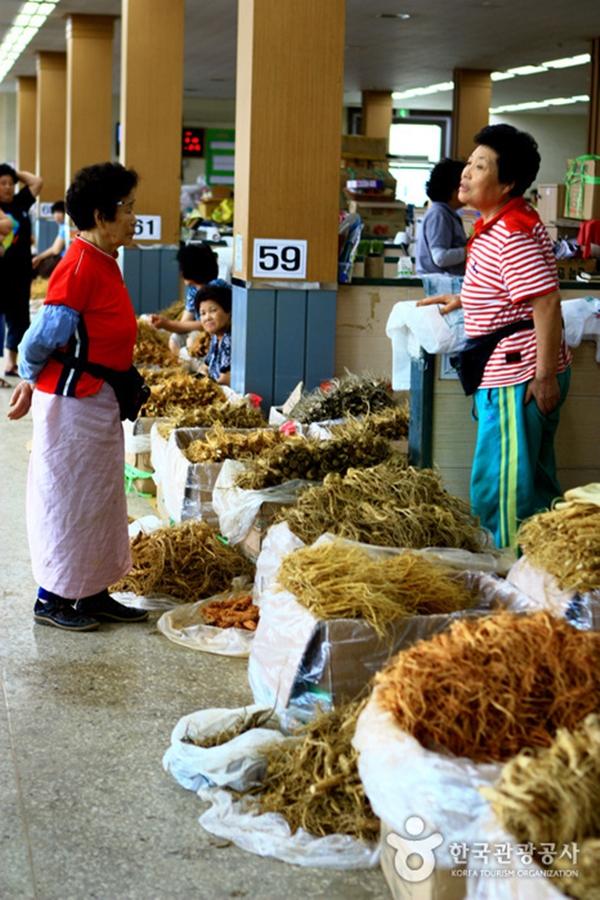 Khám phá những điều đặc biệt của chợ sâm lớn nhất thế giới 2
