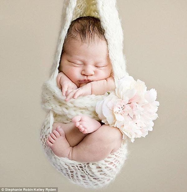 Ngắm không chớp mắt hình ảnh những em bé ngủ bên len 11