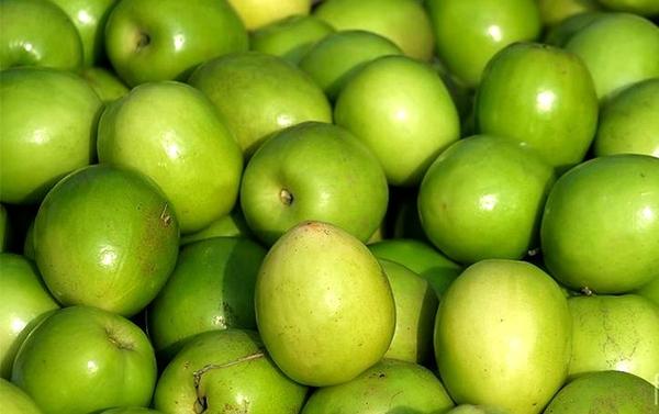 tác dụng của táo ta