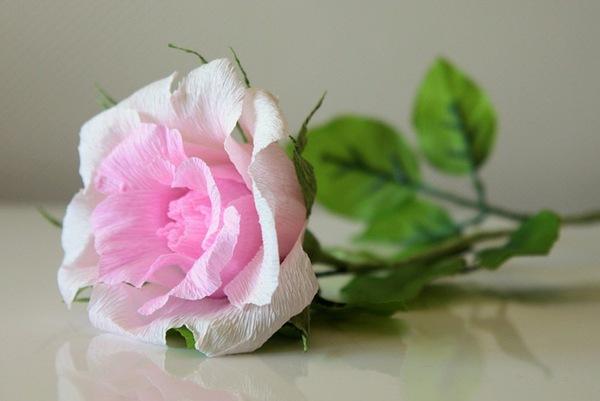 Làm hoa hồng giấy đẹp như hoa thật 1