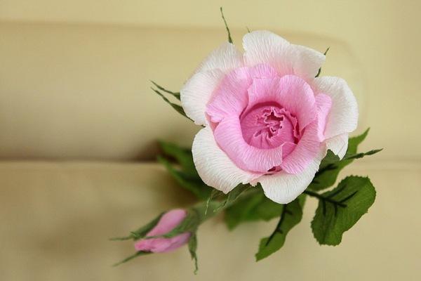 Làm hoa hồng giấy đẹp như hoa thật 13