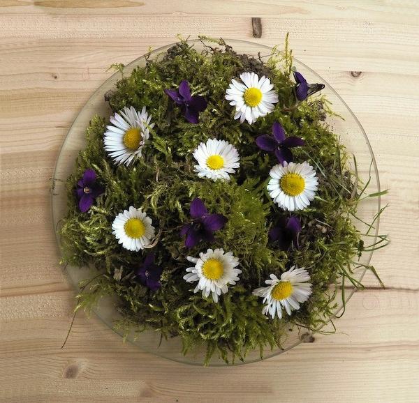 Cách cắm hoa cúc thanh nhã, tinh tế 7