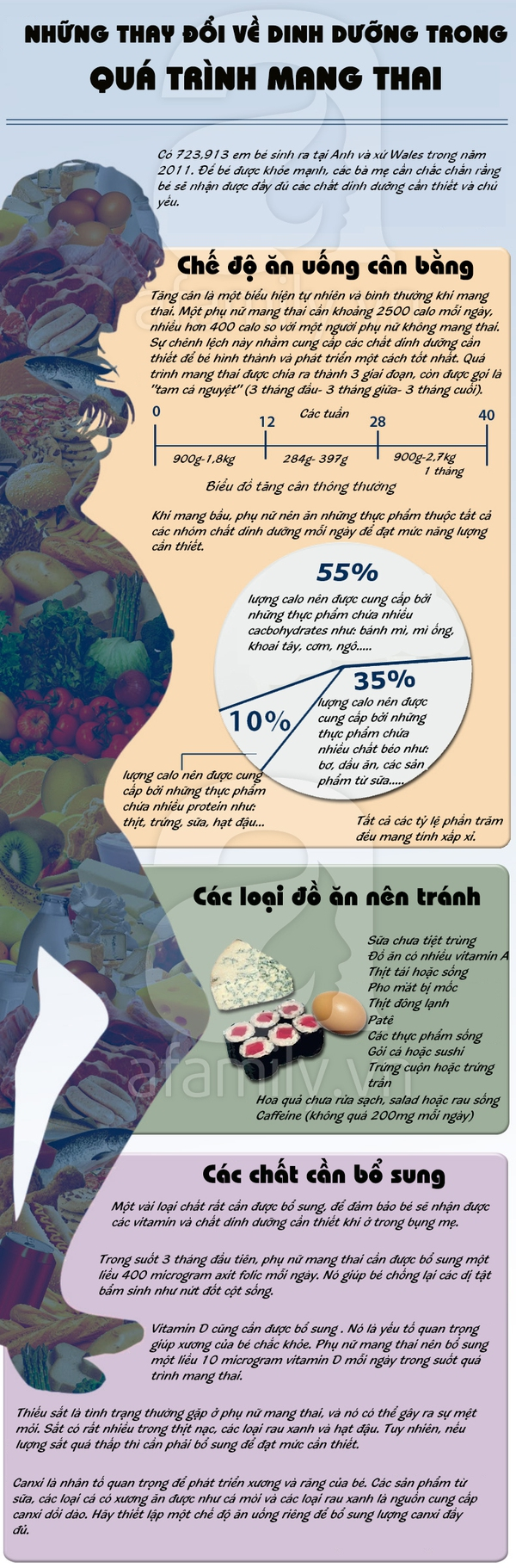 Những thay đổi về dinh dưỡng mẹ bầu cần lưu ý khi mang thai 1