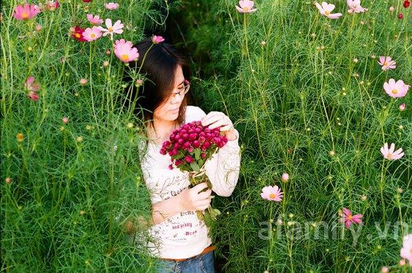 Đi chơi sớm ở 3 vườn hoa tuyệt đẹp tại Hà Nội 6