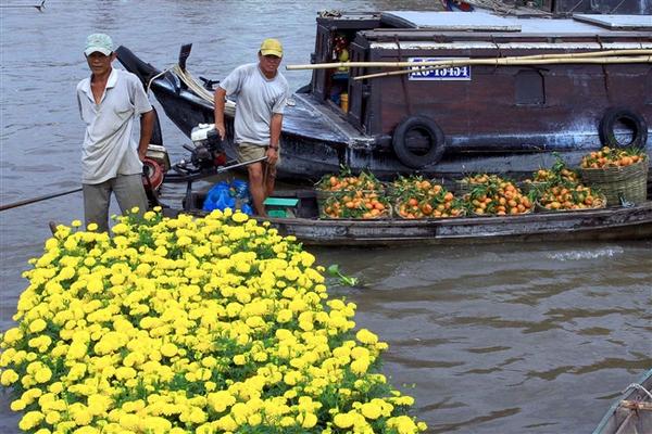 """Những """"thiên đường hoa"""" bậc nhất Việt Nam 9"""