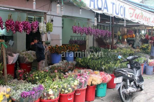 """Những """"thiên đường hoa"""" bậc nhất Việt Nam 10"""