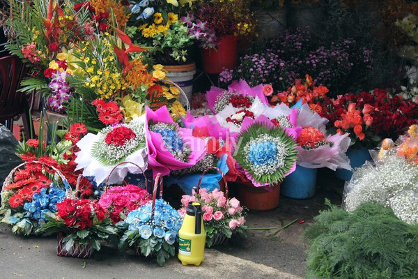 """Những """"thiên đường hoa"""" bậc nhất Việt Nam 11"""