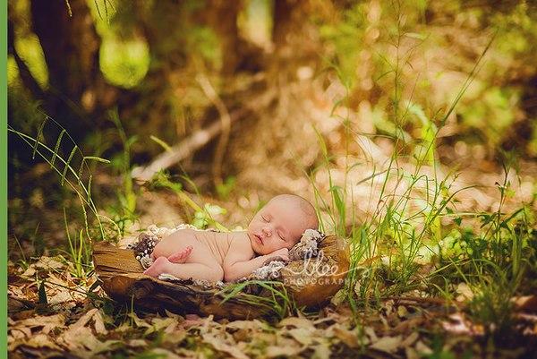 Ngất ngây ngắm chùm ảnh em bé ngủ ngon lành giữa thiên nhiên  4