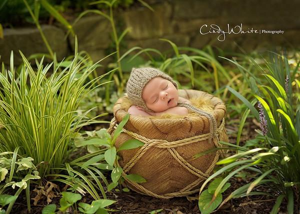 Ngất ngây ngắm chùm ảnh em bé ngủ ngon lành giữa thiên nhiên  11