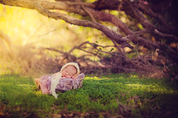 Ngất ngây ngắm chùm ảnh em bé ngủ ngon lành giữa thiên nhiên  14