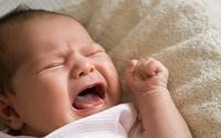 Mẹ Việt chia sẻ bí kíp trị giật mình, khóc đêm cho con bằng thảo dược châu Âu