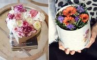 """3 cách cắm hoa trong hộp quà xinh lung linh bạn cần """"bỏ túi"""""""