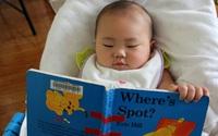 Học người Mỹ cách dạy trẻ yêu thích đọc sách