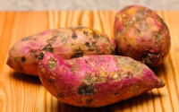 Ăn khoai lang giúp giảm cân nhưng thấy khoai thế này thì đừng dại mà ăn, coi chừng ngộ độc