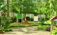 Đầu năm ghé thăm ngôi trường mầm non xanh mướt giữa lòng Hà Nội