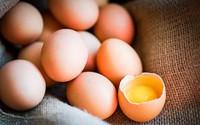 Đây là những lý do mà bạn nên bổ sung trứng vào thực đơn ăn kiêng của mình