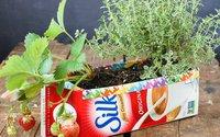 Đừng vội vứt vỏ hộp sữa hãy tận dụng làm chậu trồng cây ngay