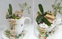Biến tách trà cũ thành vườn mini siêu lãng mạn thật dễ dàng