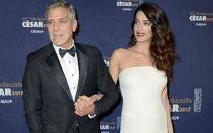 Gia đình tài tử George Clooney hạnh phúc đón cặp sinh đôi một trai, một gái