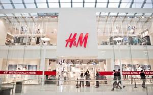 Tháng 11 này, H&M sẽ chính thức khai trương store thứ 2 Royal City Hà Nội
