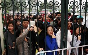 Lễ hội hoa hồng ở Hà Nội: Mới 1 ngày đã hết vé, người dân vạ vật mua vé chợ đen 250.000₫