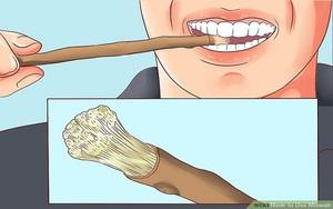 Trước khi có bàn chải, người ta làm sạch răng bằng gì?