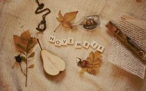 Tháng 11 này, 5 cung Hoàng đạo sau sẽ có tình yêu ngọt ngào và thăng hoa