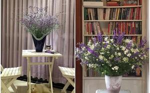 Ghé thăm căn hộ đẹp bình yên, trong trẻo đến lạ thường của người phụ nữ yêu hoa ở TP HCM