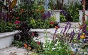 10 cách để hô biến sân vườn nhỏ trước nhà trở nên lung linh